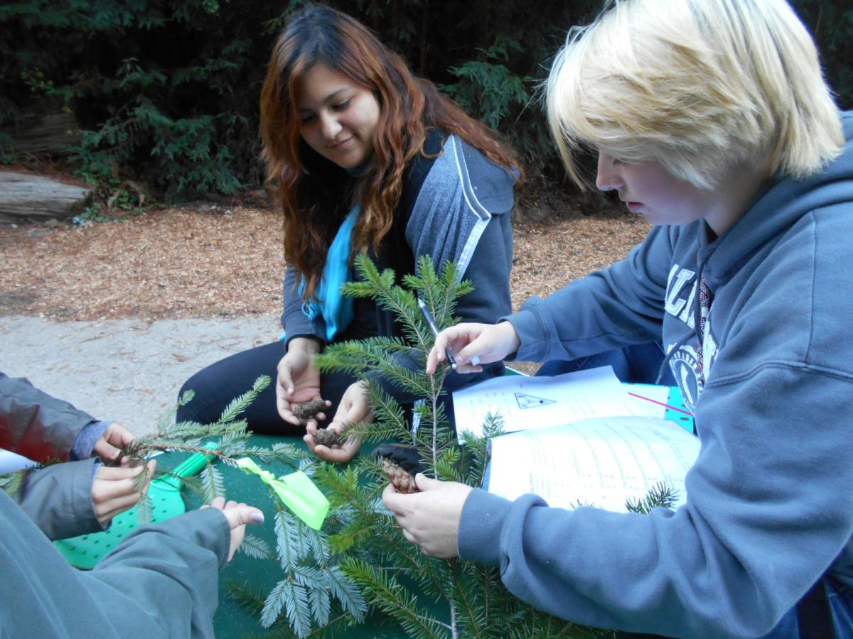 Health Professions students Emmy Zepeda (left) and Laura Schelosky describe characteristics of Coastal Redwood and Douglas-fir.