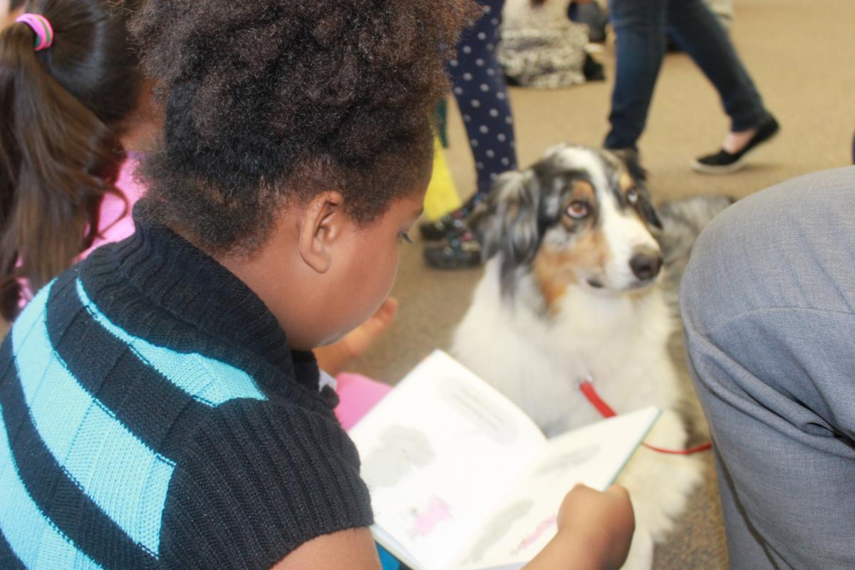 Image of Einstein provides unique literacy experience for Sequoia students