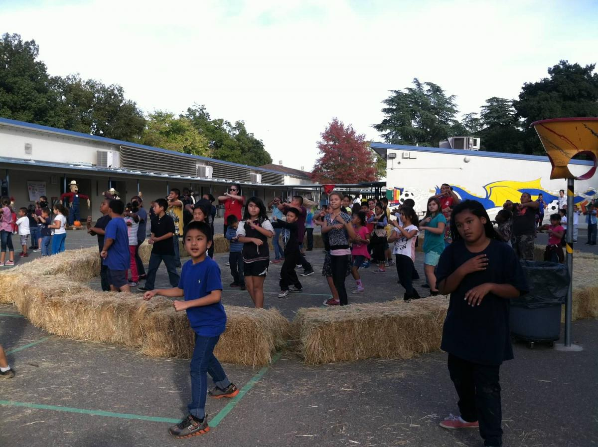 Image of Community turns out for Fall Festival at Ethel Phillips