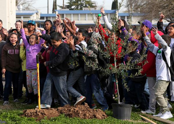 Pacific Elementary kids love their school's new trees.