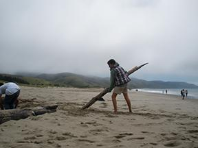 Image of Students explore natural world at Point Reyes