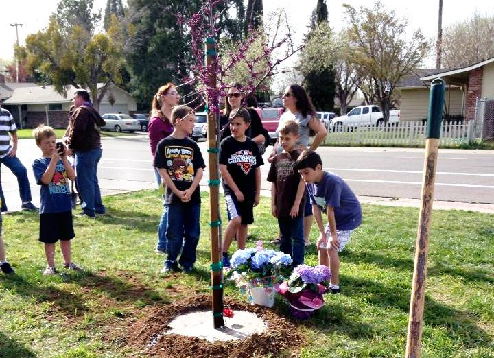 Image of Sequoia community plants a tree in honor of 4th R director