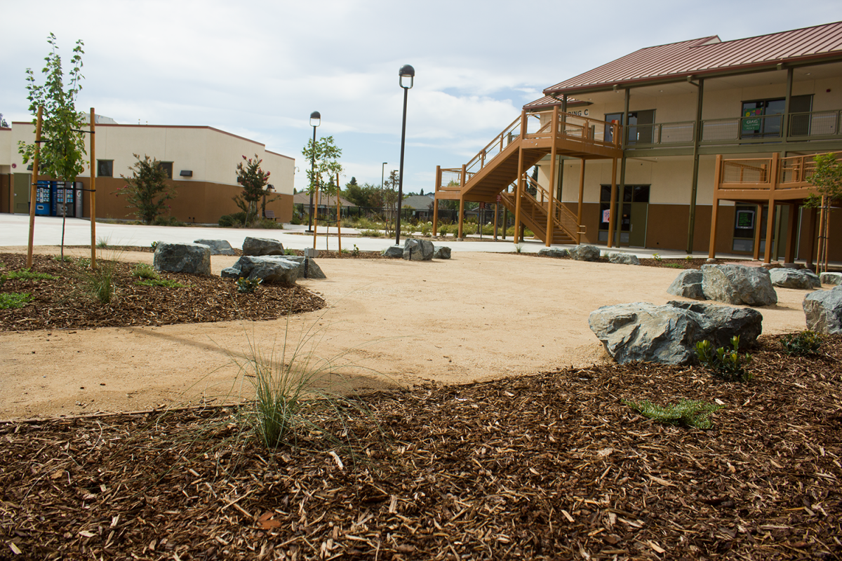 Image of Brown is the new green: SCUSD at the forefront of water conservation