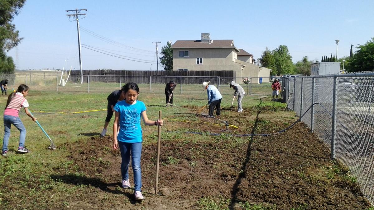 Image of Susan B. Anthony community plants the seeds for a cool school garden