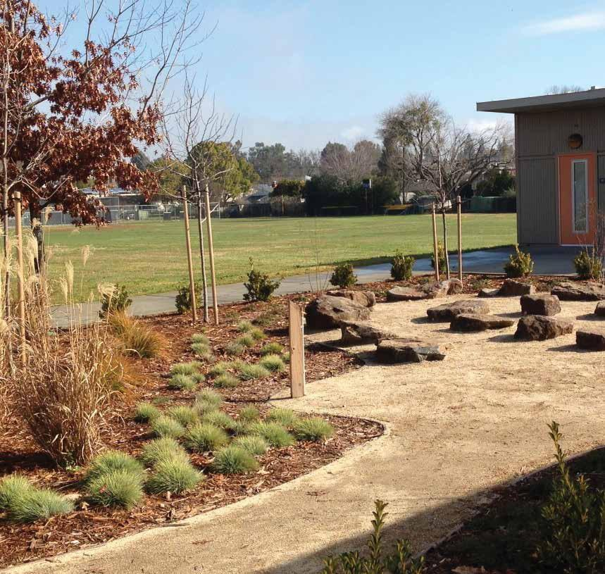 Outdoor Classroom at Phoebe Hearst Elementary
